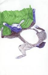 https://hesterslingenberg.nl/files/gimgs/th-1_zwemmend-konijn,2006.jpg